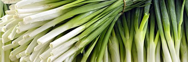 decoracao de sala humilde:Cebolinha Verde e seus benefícios